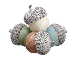 multicolor acorns