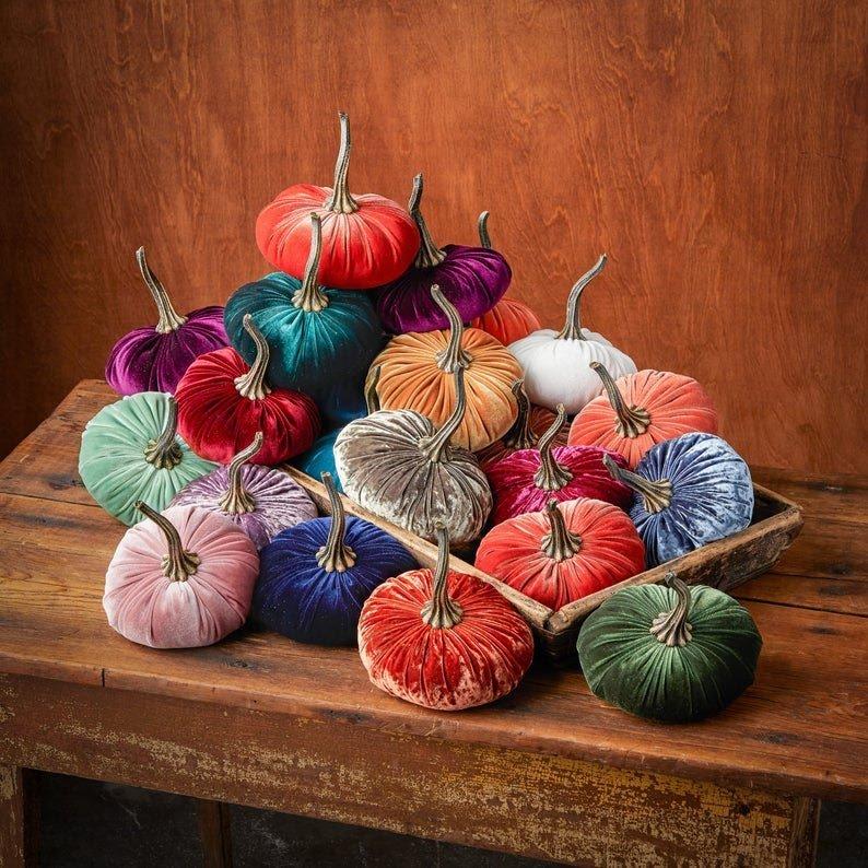 velvet multicolor pumpkins